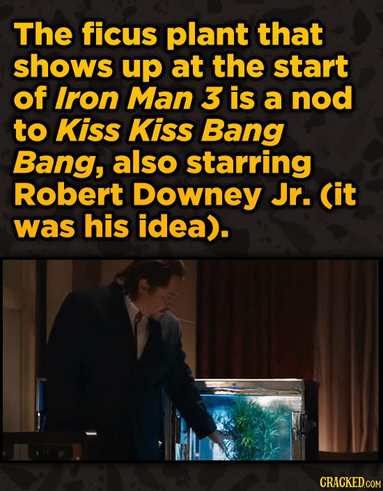 Movies With Sneaky Shout-Outs To Other Movies - The ficus plant that shows up at the start of Iron Man 3 is a nod to Kiss Kiss Bang