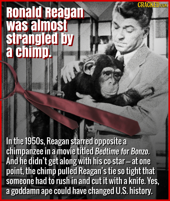 Ronald Reagan was almost strangled by a chimp. - In the 1950s, Reagan starred opposite a chimpanzee in a movie titled Bedtime for Bonzo. And he didn't