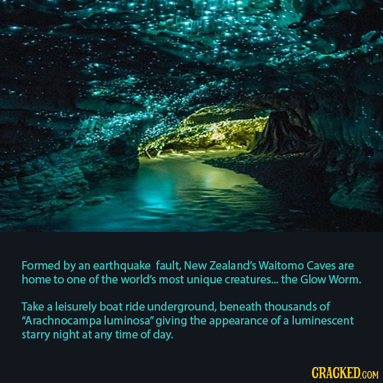 Formed by an earthquake fault, New Zealand's Waitomo Caves are home to one of the world's most unique creatures... the Glow Worm. Take a leisurely boa