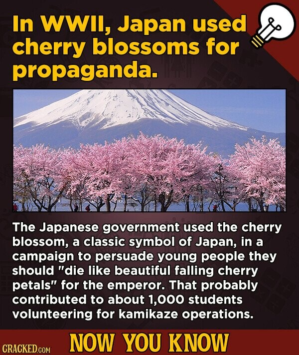 In WWil, Japan used cherry blossoms for propaganda. The Japanese government used the cherry blossom, a classic symbol of Japan, in a campaign to persu