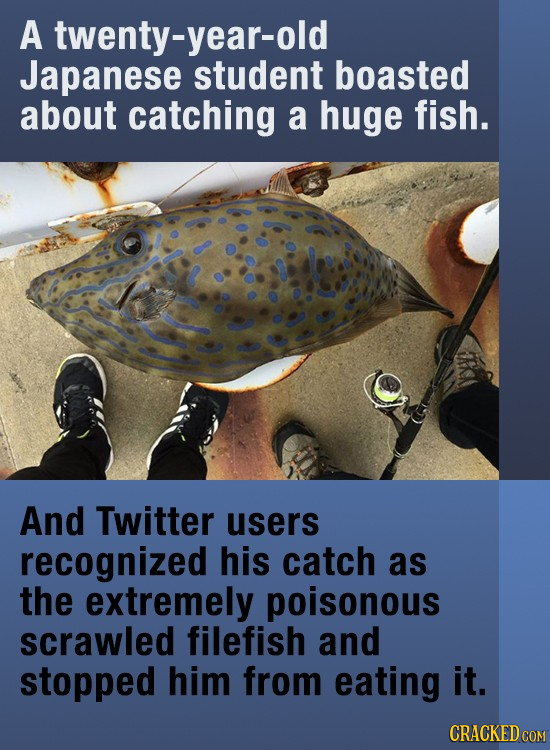 A twenty-year-old Japanese student boasted about catching a huge fish. And Twitter users recognized his catch as the extremely poisonous scrawled file