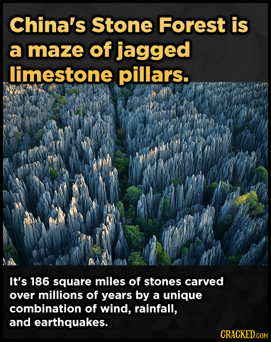 China's Stone Forest is a maze of jagged limestone pillars. It's 186 square miles of stones carved over millions of years by a unique combination of w