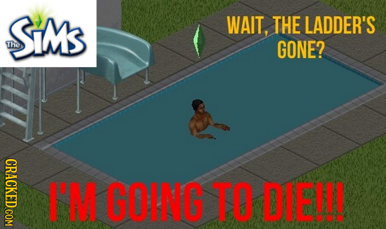 SiMS WAIT, THE LADDER'S The GONE? CRACKED COM I'M GOING TO DIE!!!