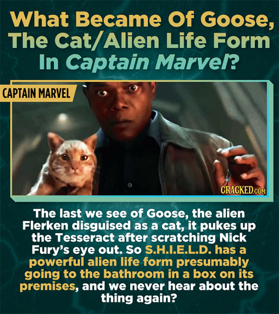 What Became Of Goose, The Cat/ Alien Life Form In Captain Marve/? CAPTAIN MARVEL CRACKEDCO The last we see of Goose, the alien Flerken disguised as a