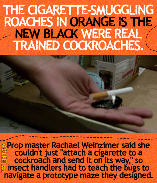 THE CIGARETTE-SMUGGLING ROACHES IN ORANGE IS THE NEW BLACK WERE REAL TRAINED COCKROACHES. Prop master Rachael Weinzimer said she IRL couldn't just at