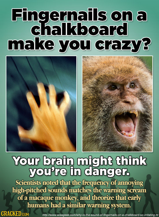 Fingernails on a chalkboard make you crazy? Your brain might think you're in danger. Scientists: noted that the frequency of annoying high-pitched sou