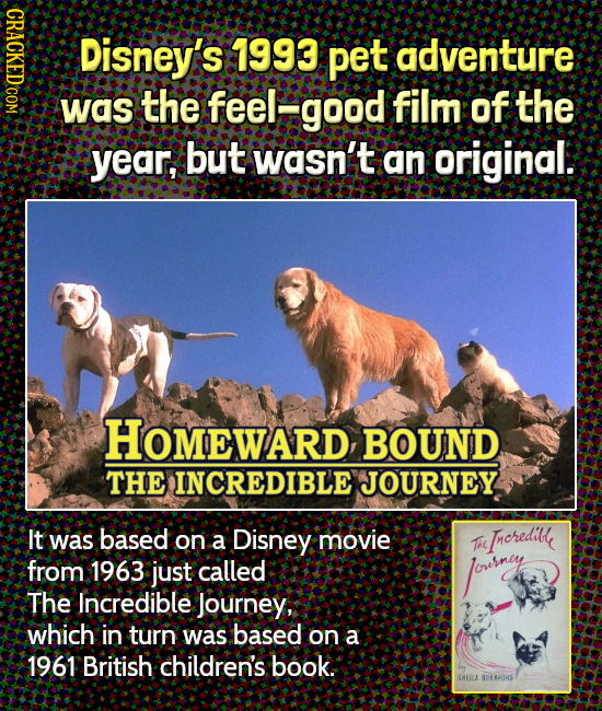 ND1C Disney's 1993 pet adventure was the feel' good film of the year, but wasn't an original. HOMEWARD, BOUND THE INCREDIBLE JOURNEY It was based on a