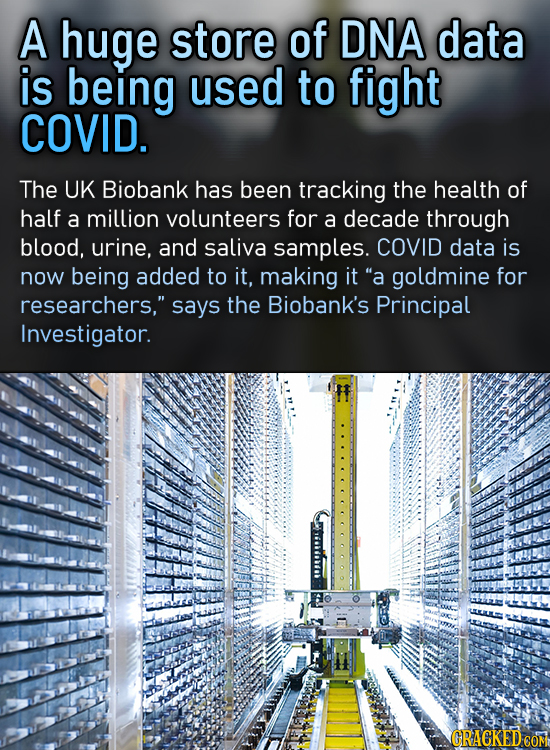 A huge store of DNA data is being used to fight COVID. The UK Biobank has been tracking the health of half a million volunteers for a decade through b