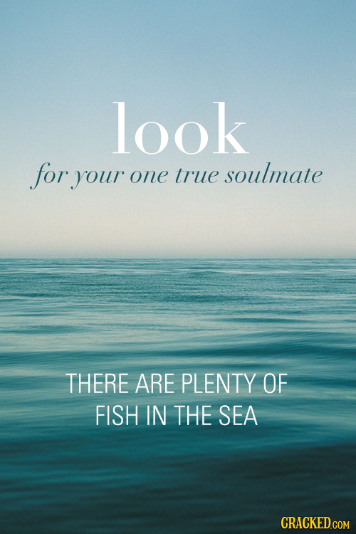 look for your one true soulmate THERE ARE PLENTY OF FISH IN THE SEA CRACKED.COM