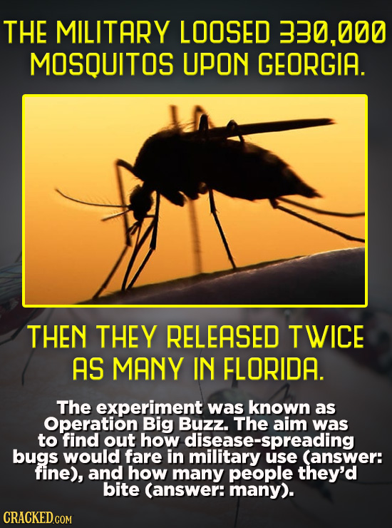 THE MILITARY LOOSED 330,000 MOSQUITOS UPON GEORGIA. THEN THEY RELEASED TWICE AS MANY IN FLORIDA. The experiment was known as Operation Big Buzz. The a