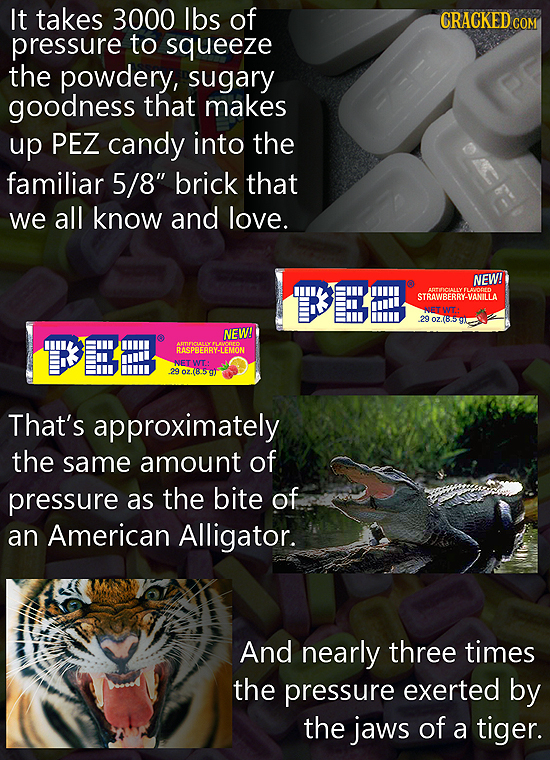 16 Insane Facts About the Making of Everyday Products