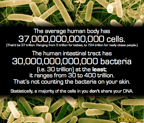 The average human body has 37,000,000,000,000 cells. (That'd be 37 trillion. Ranging from 5 trillion for babies. to 724 trillion for really obese peop