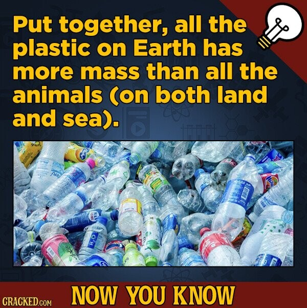 Put together, all the plastic on Earth has more mass than all the animals Con both land and sea). HO NOW YOU KNOW
