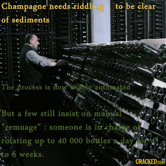 Champagne eeds-riddling to be clear of sediments The process is now widely automated But few still a insistr on. manal remuage : someone is in charg
