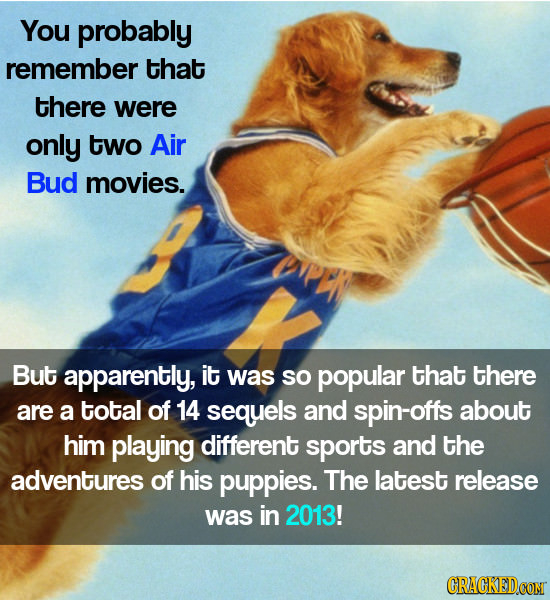 You probably remember that there were only two Air Bud movies. But apparently, it was so popular that there are a total of 14 sequels and spin-offs ab