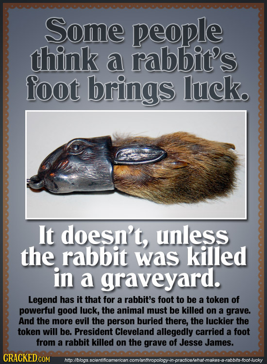 Some people think a rabbit's foot brings luck. It doesn't, unless the rabbit was killed in a graveyard. Legend has it that for a rabbit's foot to be a