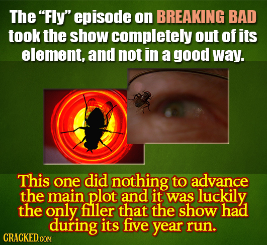 The Fly episode on BREAKING BAD took the show completely out of its element, and not in a good way. This one did nothing to advance the main plot an