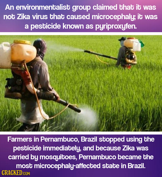 An environmentalist group claimed that it was not Zika virus that caused microcephaly; it was a pesticide known as pyriproxyfen. Farmers in Pernambuco