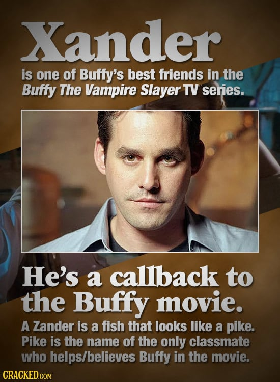 Xander is one of Buffy's best friends in the Buffy The Vampire Slayer TV series. He's a callback to the Buffy movie. A Zander is a fish that looks lik