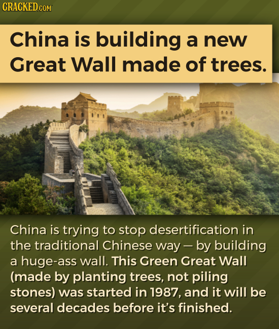 CRACKED COM China is building a new Great Wall made of trees. China is trying to stop desertification in the traditional Chinese way - by building a h