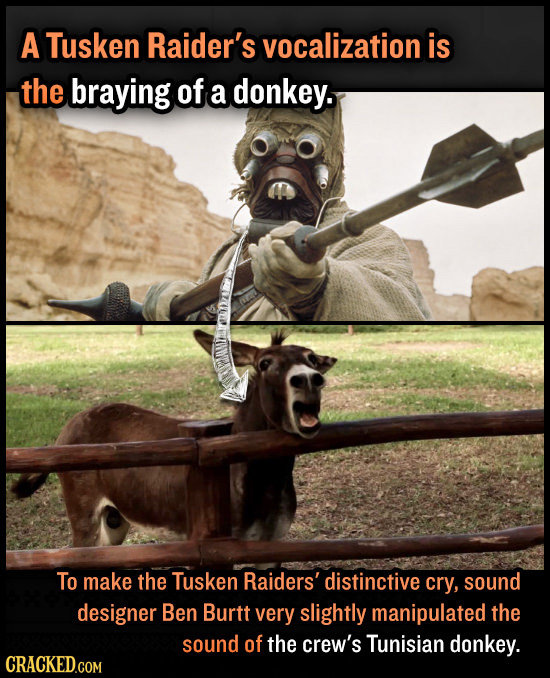 A Tusken Raider's vocalization is the braying of a donkey. To make the Tusken Raiders' distinctive cry, sound designer Ben Burtt very slightly manipul