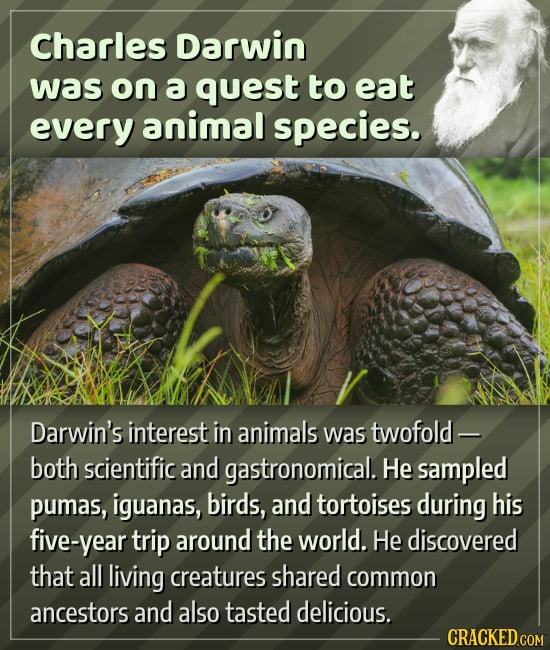 Fun Facts For Your Brain To Munch On