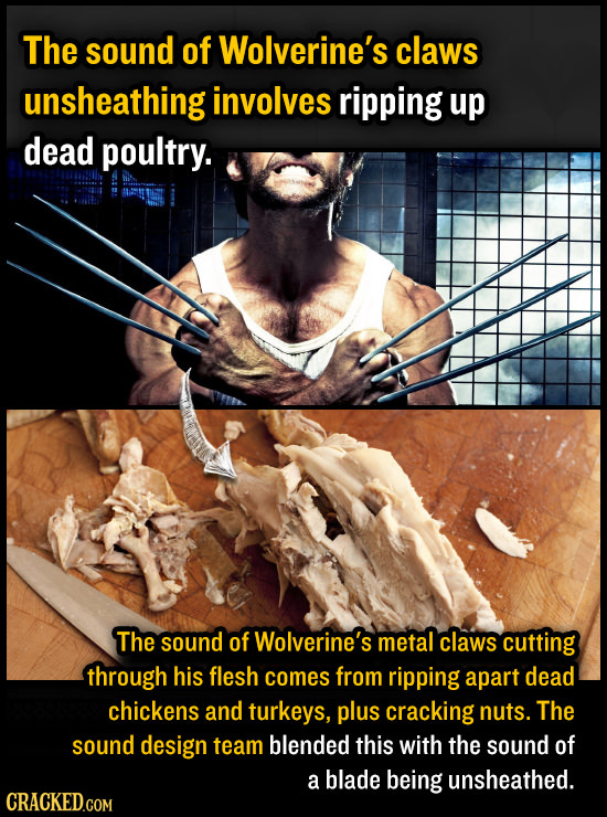 The sound of Wolverine's claws unsheathing involves ripping up dead poultry. The sound of Wolverine's metal claws cutting through his flesh comes from