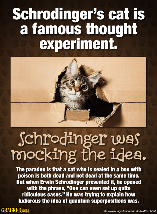Schrodinger's cat is a famous thought experiment. Schrodinger was rocking the idea. The paradox is that a cat who is sealed in a box with poison is bo