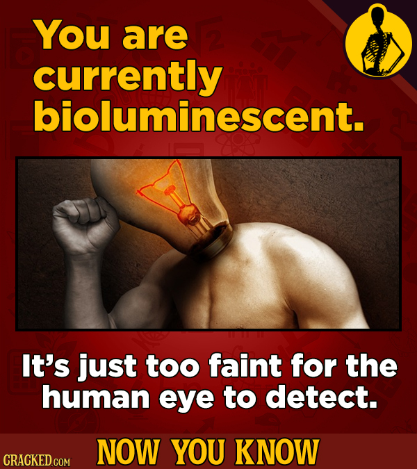 You are currently bioluminescent. It's just too faint for the human eye to detect. NOW YOU KNOW CRACKED COM
