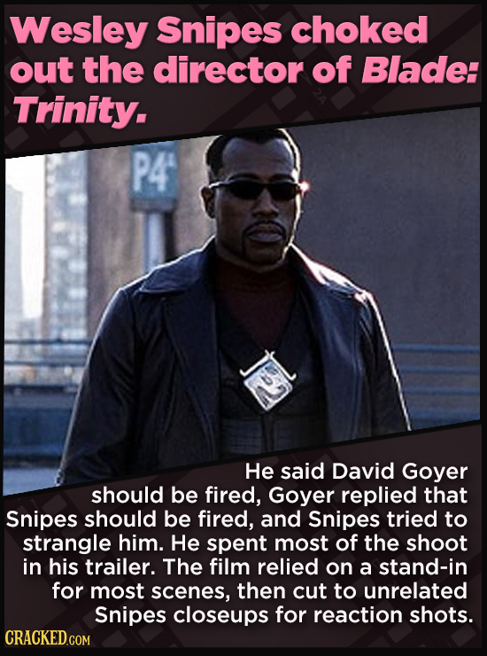 21 Beloved Celebrities Who Melted Down In Spectacular Ways - He said David Goyer  should be fired, Goyer replied that Snipes should be fired, and Snip