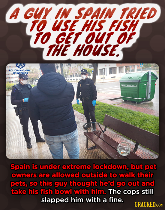 A Guy IN SPAIN TRIED TO UsE HIS FISH TO GET OUT OF THE HOUSE. is POLICLA NACIONAL M* INTERIOR Spain is under extreme lockdown, but pet owners are allo