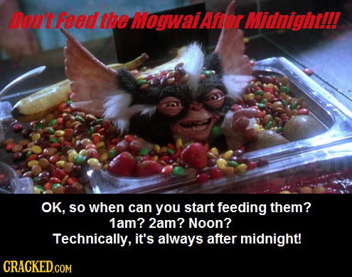 Don't Feed the MoywaiAfer Midnightll! OK, so when can you start feeding them? 1am? 2am? Noon? Technically, it's always after midnight! CRACKEDGOM
