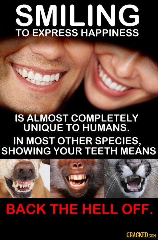 SMILING TO EXPRESS HAPPINESS IS ALMOST COMPLETELY UNIQUE TO HUMANS. IN MOST OTHER SPECIES, SHOWING YOUR TEETH MEANS BACK THE HELL OFF.
