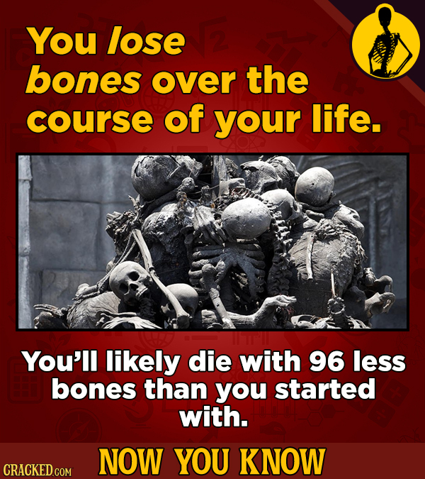You lose bones over the course of your life. You'll likely die with 96 less bones than you started with. NOW YOU KNOW CRACKED COM
