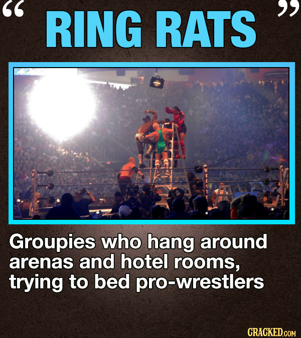 RING RATS  Groupies who hang around arenas and hotel rooms, trying to bed -wrestlers CRACKED.COM