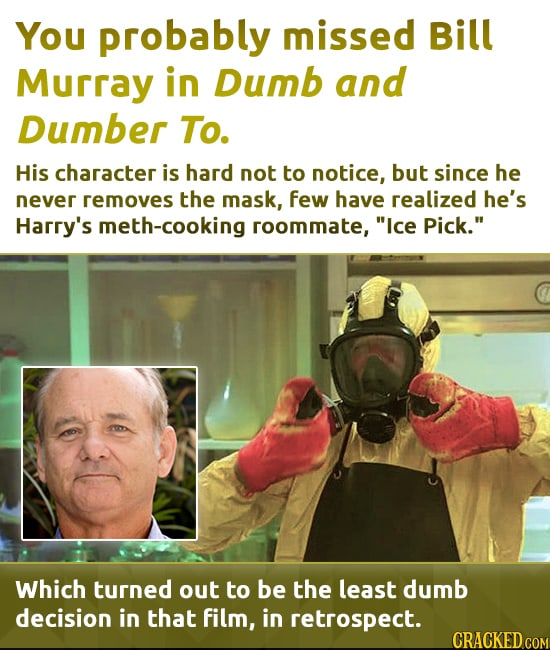 You probably missed Bill Murray in Dumb and Dumber To. His character is hard not to notice, but since he never removes the mask, few have realized he'