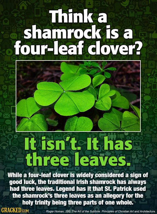 Think a shamrock is a four-leaf clover? It isn't. It has three leaves. While a four-leaf clover is widely considered a sign of good luck, the traditio