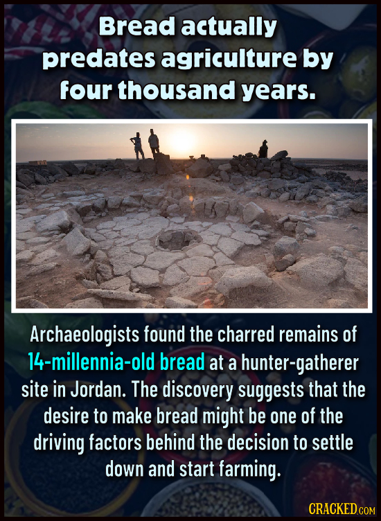 Bread actually predates agriculture by four thousand years. Archaeologists found the charred remains of 14-millennia-old bread at a hunter-gatherer si