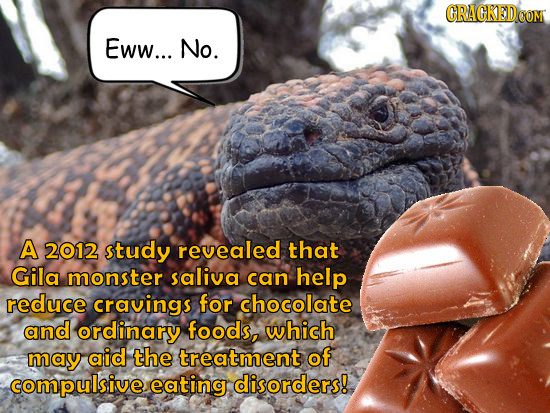CRACKEDeC COM Eww... No. A 2012 study revealed that Gila monster saliva can help reduce cravings for chocolate and ordinary foods, which may aid the t