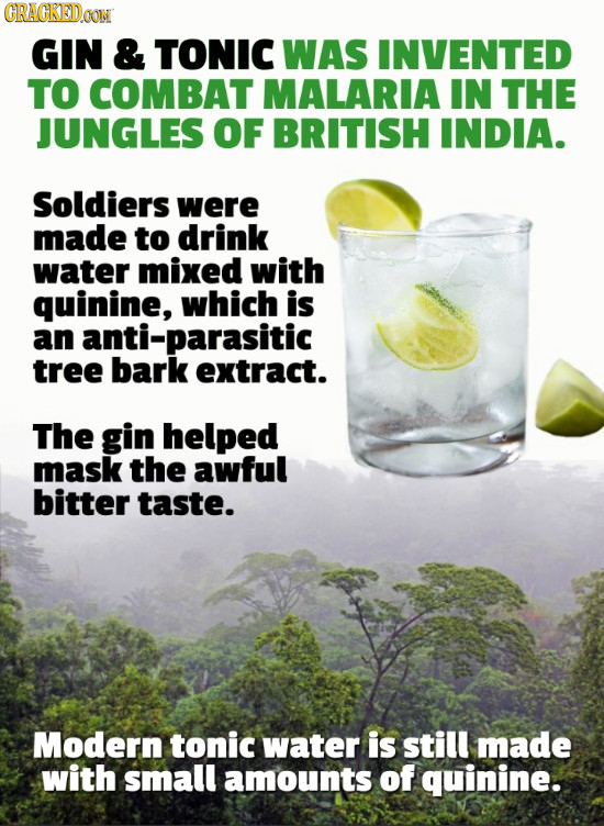 CRAGKEDOONN GIN & TONIC WAS INVENTED TO COMBAT MALARIA IN THE JUNGLES OF BRITISH INDIA. Soldiers were made to drink water mixed with quinine, which is