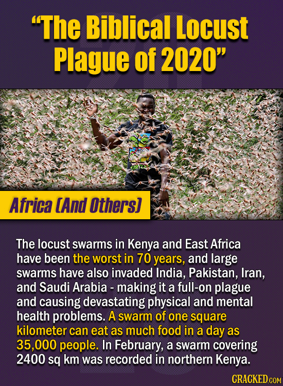 """15 Of The Strangest Things 2020 Managed To Cook Up  (Part 1) - """"The Biblical Locust Plague of 2020"""" The locust swarms seen in Kenya and East Africa th"""