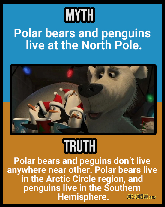 MYTH Polar bears and penguins live at the North Pole. TRUTH Polar bears and peguins don't live anywhere near other. Polar bears live in the Arctic Cir