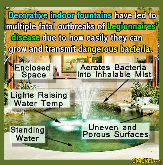 Decorative indoor fountains have led to multiple fatal outbreaks of Legionnaires' disease due to how easily they can grow and transmit dangerous bacte