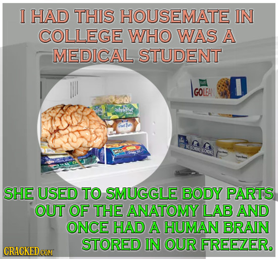 I HAD THIS HOUSEMATE IN COLLEGE WHO WAS A MEDICAL STUDENT IGOLEA GOLEA ohlafret Toit Ra LODKE SHE USED TO SMUGGLE BODY PARTS OUT OF THE ANATOMY LAB AN