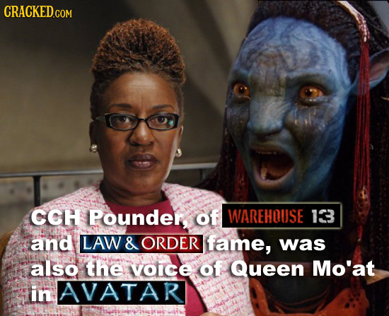 CRACKED.COM CCH Pounder, of WAREHQUSE 18 and LAW & ORDER fame, was also thE oICE of Queen Mo'at in AVATAR