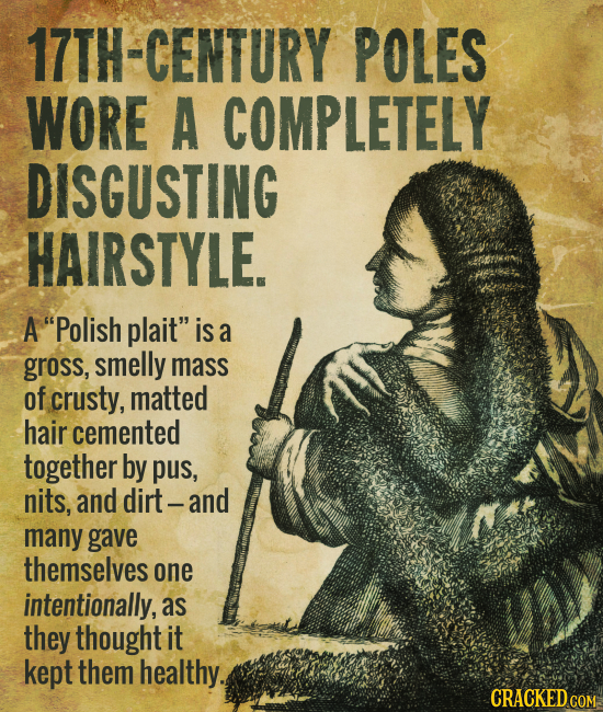 17TH-CENTURY POLES WORE A COMPLETELY DISGUSTING HAIRSTYLE. A Polish plait is a gross, smelly mass of crusty, matted hair cemented together by pus, n