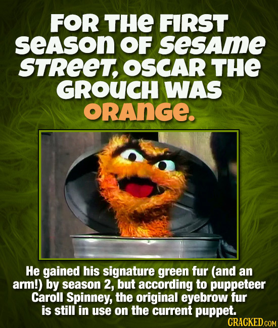 FOR THE FIRST seAson OF sesame STREET, OSCAR THE GROUCH WAS ORANGE. He gained his signature green fur (and an arm!) by season 2, but according to pupp