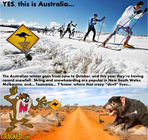 YES, this is Australia... KANGARCN HOPPET HEXT The Australian winter goes from June to October. and this year they're having record snowfall. Skiing a