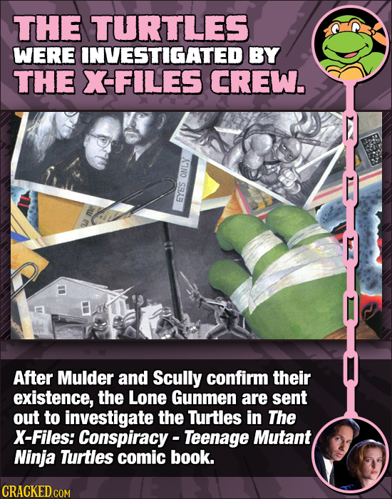 THE TURTLES WERE INVESTIGATED BY THE XFILES CREW. ONLY EYES After Mulder and Scully confirm their existence, the Lone Gunmen are sent out to investiga