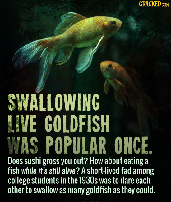CRACKED.COM SWALLOWING LIVE GOLDFISH WAS POPULAR ONCE. Does sushi gross you out? How about eating a fish while it's still alive? A short-lived fad amo